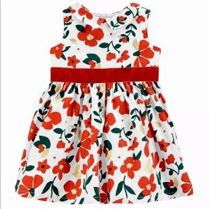Carter's Floral Sateen Holiday Dress (9M)